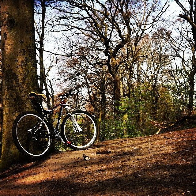 #sun #bike & #trails