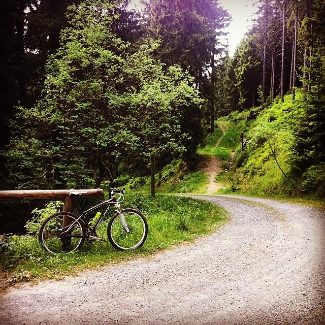 Ein Gefühl von Berg. #nixfehlt #altenau #harz