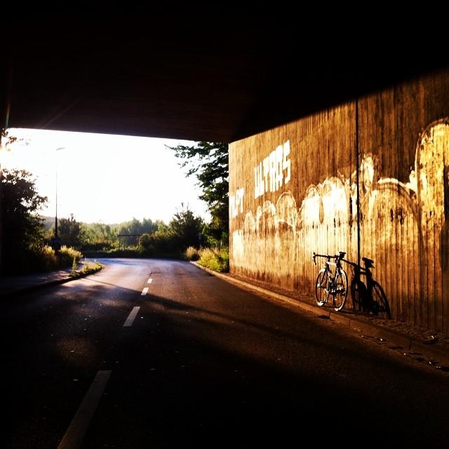 #biketowork #rennrad #sun