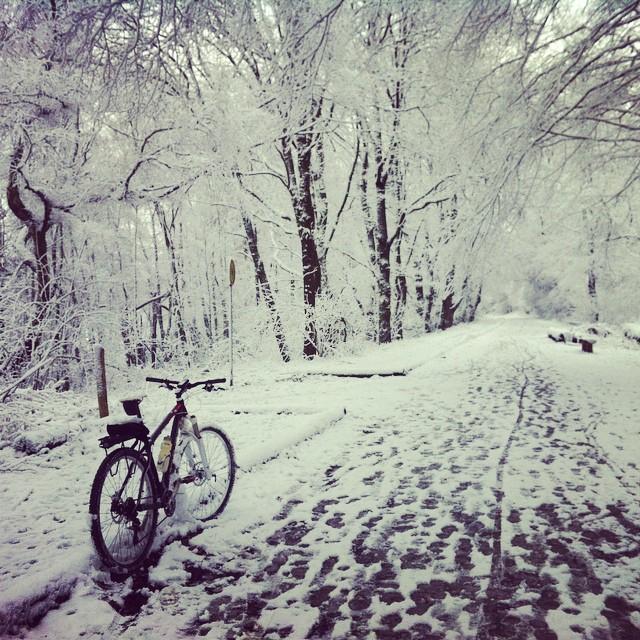 Mehr Matsch als Schnee #revier #ruhrpott #bike #bochum #schnee