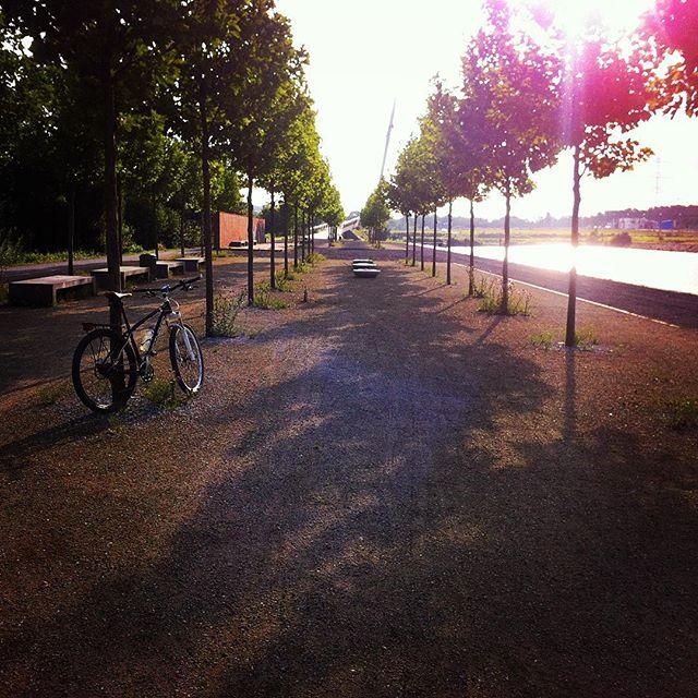 Good Morning Ruhrpott. #igers_mtb #instadailey #kanal #bike #bochum #gelsenkirchen #stravaphoto #sonne #sun #morning #ruhrpott #sommersonneruhrpott