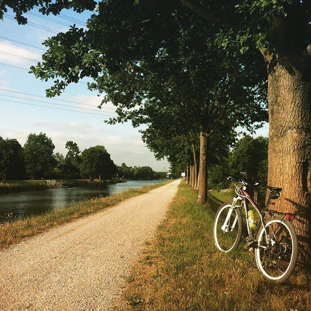 Straight. #bike #kanal #morning #stravaphoto #instagood #sommersonneruhrpott