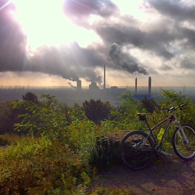 Halde (94m) statt Bielerhöhe (2038m). Schön.Is datt nicht.  #landscape #biking #ruhrpott