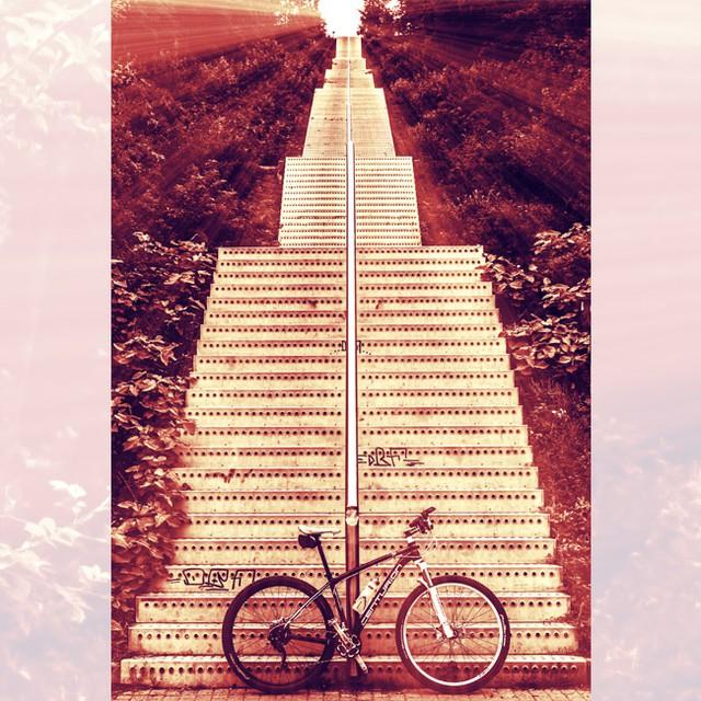 Stufen zum Tetraeder #biking #landscape #tetraeder #stairs #anotherstairwaytoheaven #bottrop #diewocheaufinstagram #ig_ruhrgebiet