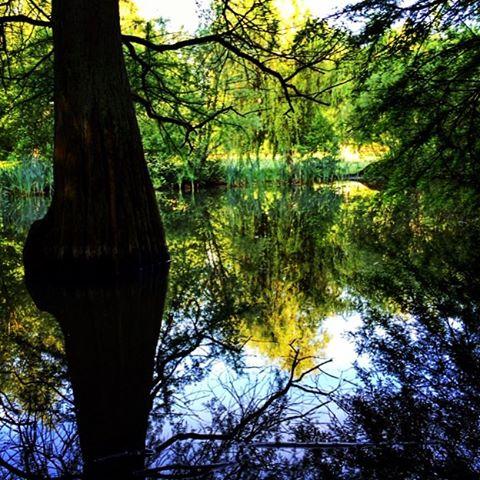 Good Morning, wenn sich blauer Himmel im Wasser spiegelt , wird es ein schöner Tag. Sach ich jetzt mal... #weisheit #park #bochum #ruhrpott #walk #ig_photooftheday