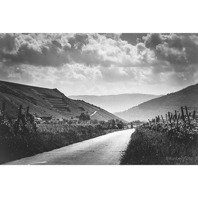 Radler zwischen Weinbergen auf dem Moselradweg. Biciclyst between vineyards near river Mosel. #fujifilm #blackandwhite #mosel #danbergfoto #monochromatic #igersbnw #bwphotooftheday #instagood #ilovetraveling #landscape #nature